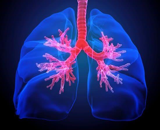 Lo screening del cancro al polmone salva la vita: conferma dello studio Nelson